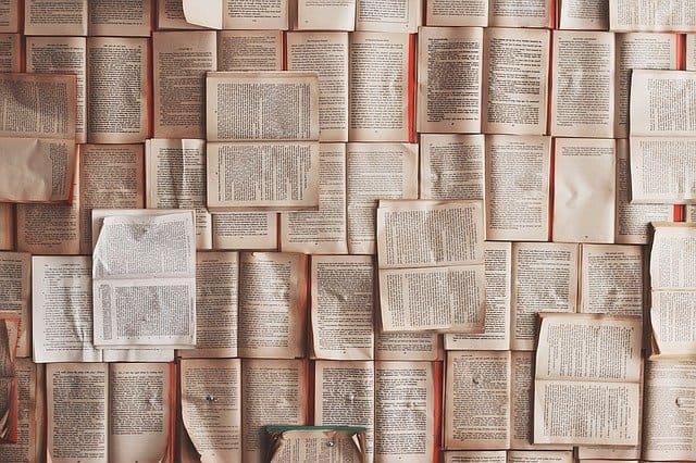 Vocabulario, glosario y terminología Prepper